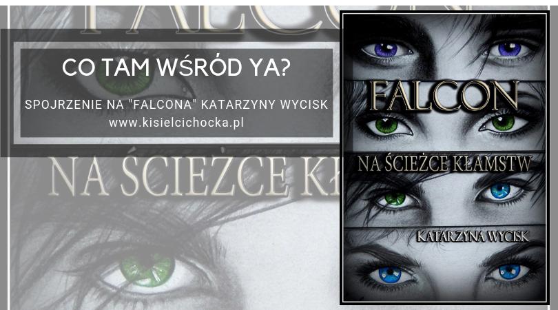Falcon_Katarzyny_Wycick_kisielcichocka_pl