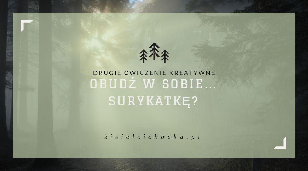 surykatka_drugiecwiczenie_kisielcichocka_pl