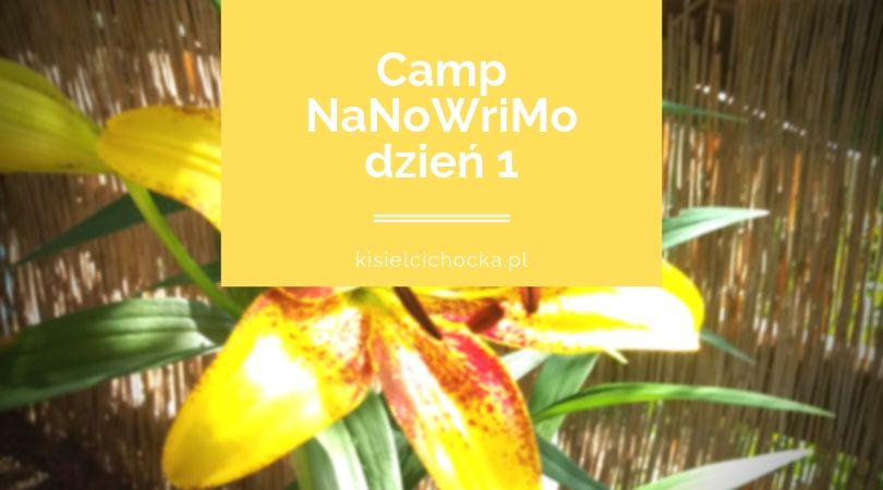 camp1_kisielcichocka_pl
