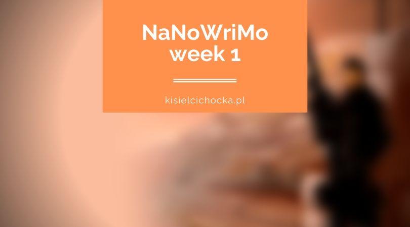 nanow19_w1_kisielcichocka_pl