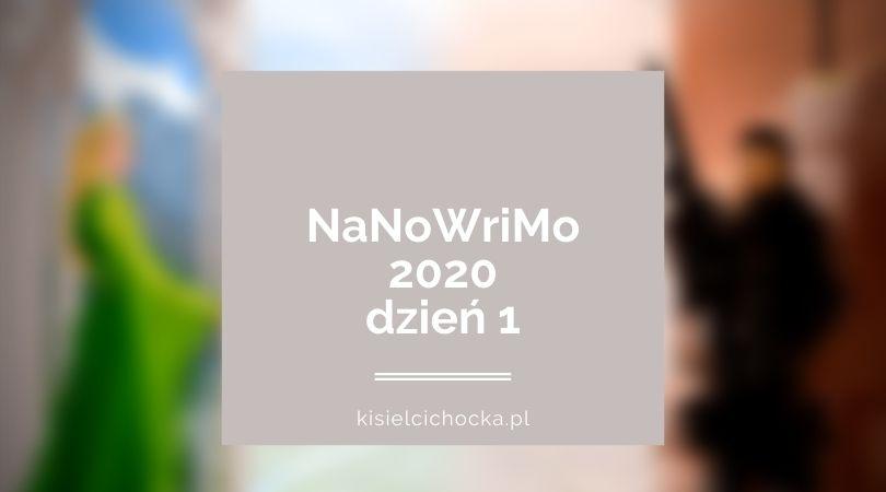 nanow20_d1_kisielcichocka_pl